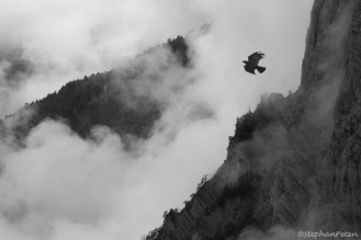 Alpes9